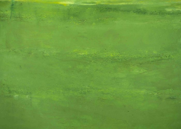 "Late Green, 2001. Oil on canvas, 915 x 1219mm (36 x 48"")."
