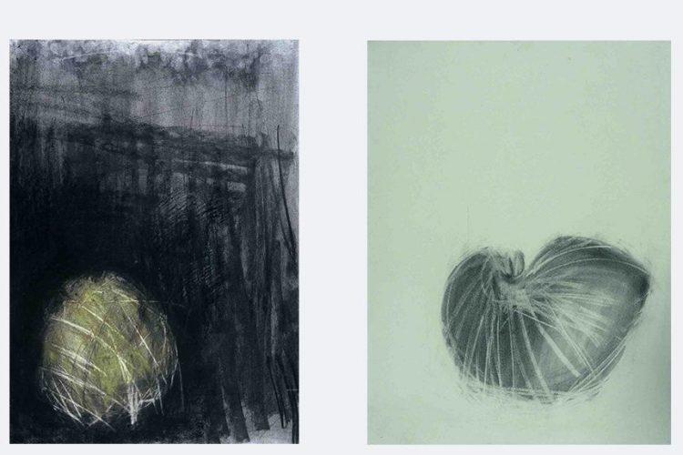 "L: Bundle, 1999. Charcoal & pastel on paper, 755 x 555 mms (30 x 22""). R: Giles's Nautilus, 1999 Charcoal & pastel on paper 535 x 390mm (21 x 15.5"")."