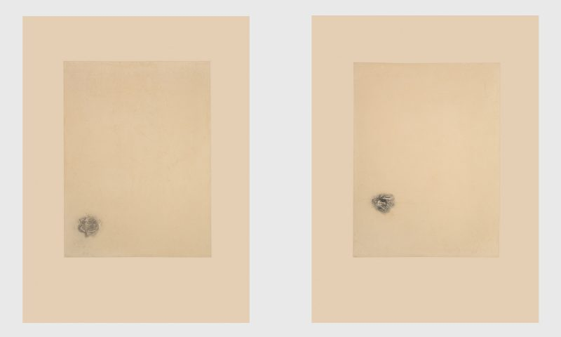 "Caught in Amber I & II, 2001. Artists Proof Etchings on Somerset cotton rag with 4 deckle edges. 760 x 560mm (30 x 22"")"