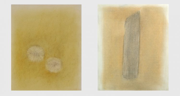 "L: Meet Uncle Edi, Australian Ancestor (570 million years), 2002.  R: Going Straight, 2002. Both mixed media on paper, 585 x 465mm (23 x 18.5"")"